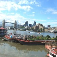 Downing Road Floating Gardens, River Thames