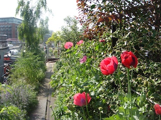barges-gardens