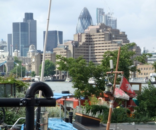gherkin-from-barge-garden