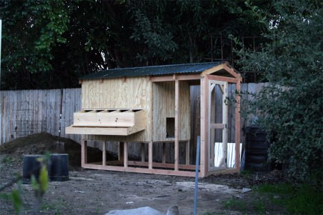 chicken_coop_progress2-1