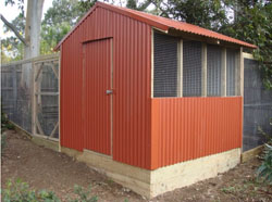corrugated_iron_chook_house