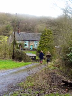 Dropping down Green Lane towards one of the un-named tributary streams feeding Scow Brook...