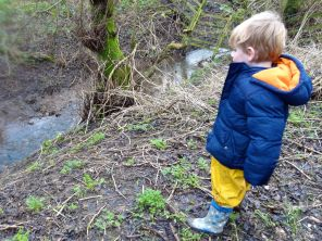 Fin, fascinated, stops and stares, and throws stones...