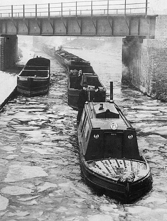BITTELL (Tug 5) towing a train of joey boats towards Gorsty Hill Tunnel. Circa 1950.
