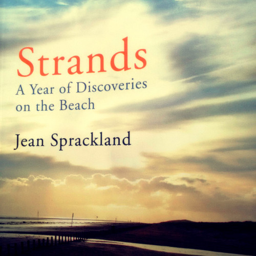 strands-book-cover