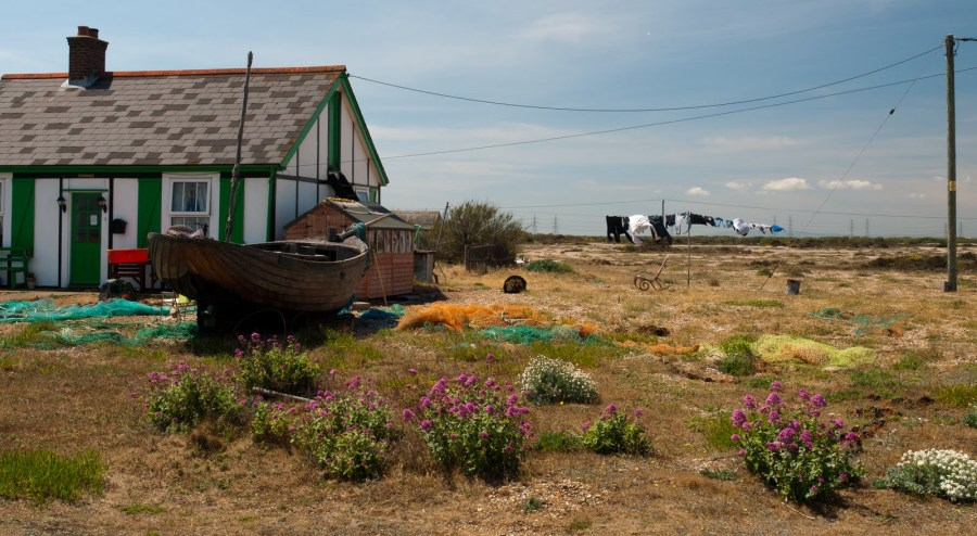 Pretty Dungeness-6013974