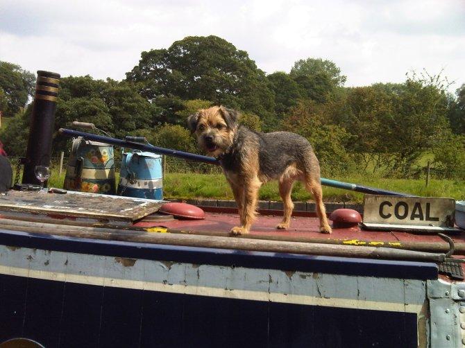 biff_onboard_narrow_boat_alton