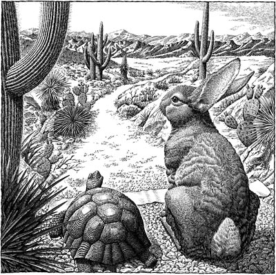Scratchboard_Tortoise_And_Hare