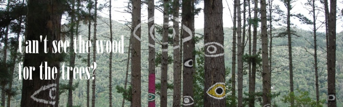 bosque-de-oma-2008