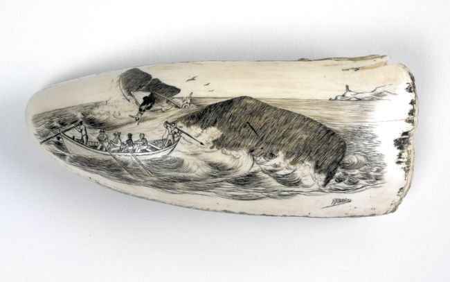 Scrimshaw%20whalers%20image